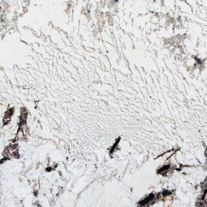 Bianco alpinus