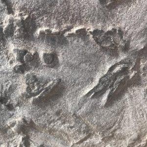 Текстура камня Кожа